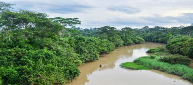 Comoé National Park  Climate change takes toll on natural World Heritage sites Como   National Park
