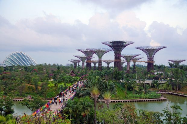 Singapore Garden by the Bay