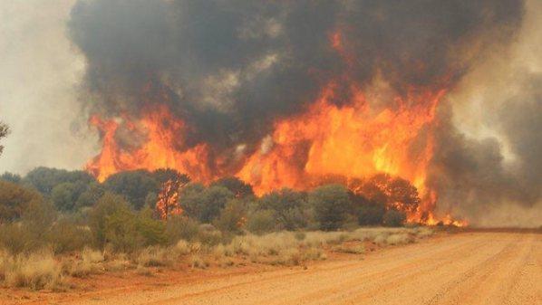 Bush burning  Dry Season: FCTA bans indiscriminate bush burning bush 1