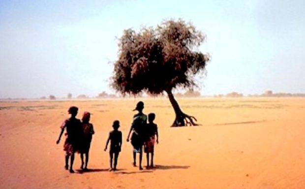 Desertification  EU, Oxfam move to battle desertification in Katsina Desertification e1529257967647