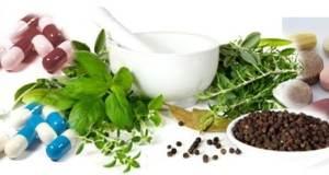 phytomedicine  Nigeria can lead in phytomedicine, says biologist phytomedicine