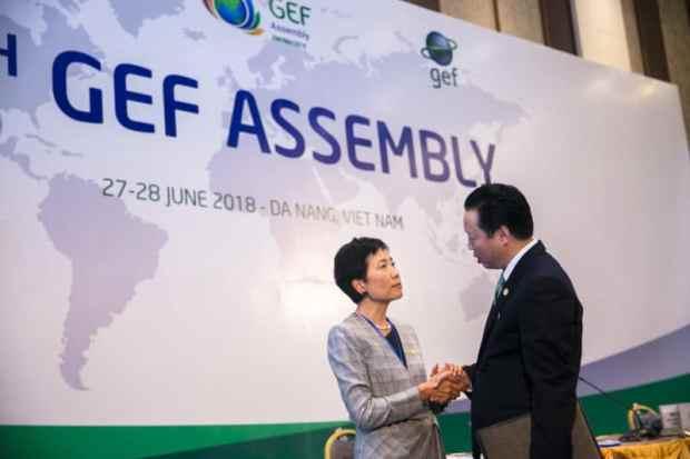 GEF Assembly