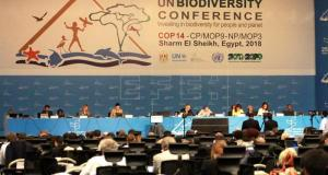 UN Biodiversity Conference  Don urges countries to apply ICT in biodiversity conservation UN Biodiversity Conference