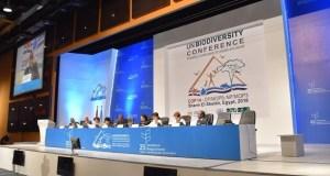 2018 UN Biodiversity Conference
