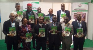 Niger Delta Climate Action Plan