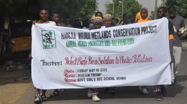 Nguru vultures conservation  Migratory Bird Day: Nguru rallies to conserve vultures Nguru pix 1