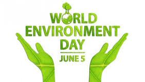 Radio Report: Experts urge cleaner Lagos on World Environment Day download