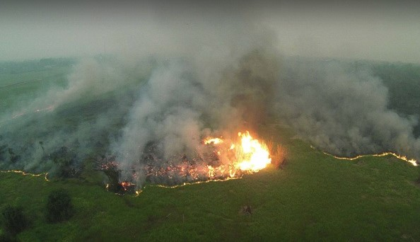 Indonesia fires  Satellites show 2019 Indonesia fires burned 1.6m hectares of land mail 1