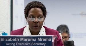 Elizabeth Maruma Mrema  Our expectations from post-2020 biodiversity negotiations, by CBD CBD 1