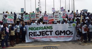 GMOs rally  Civil society wants GMOs banned GMO