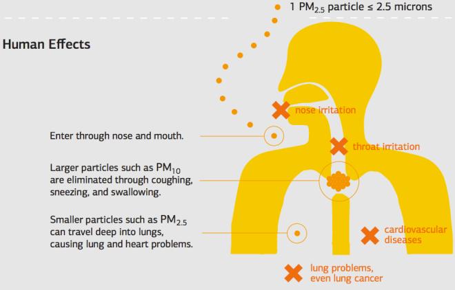 Las partículas finas atacan directamente el pulmón