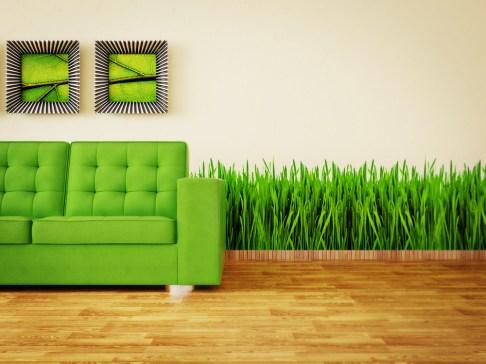 Tips for Living Green