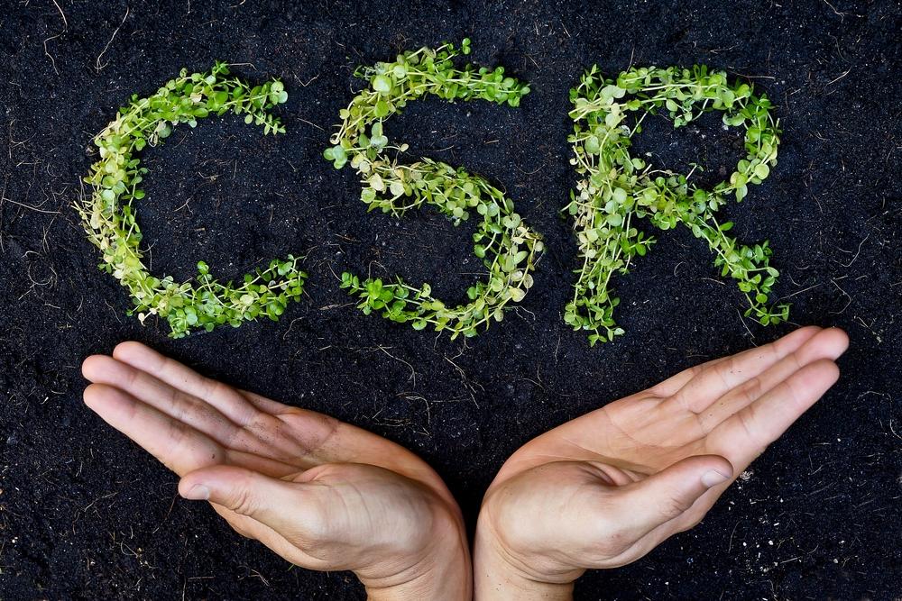 Can Environmentally Sustainable Business Practices Inform CSR?
