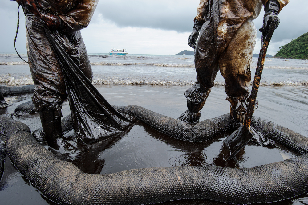 New Information on the Effects of the Deepwater Horizon Spill