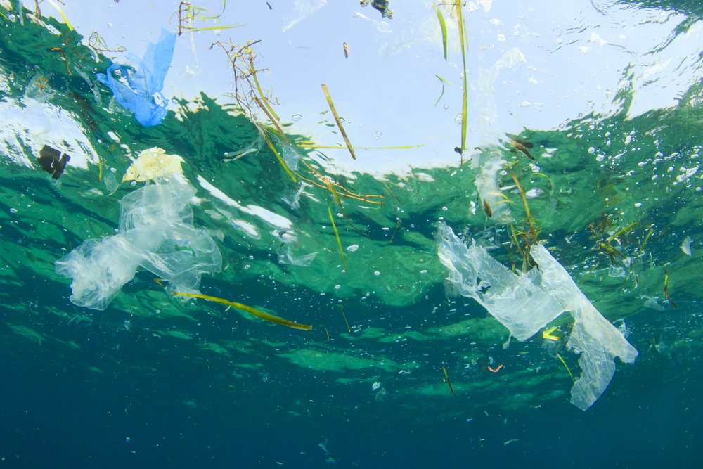 Keeping Plastic out of the Ocean is More Effective than Cleaning it Later