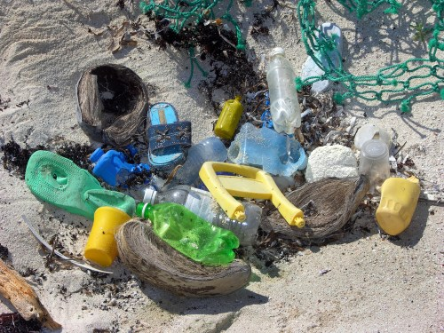 A Dutch foundation has measured the Great Pacific Garbage Patch
