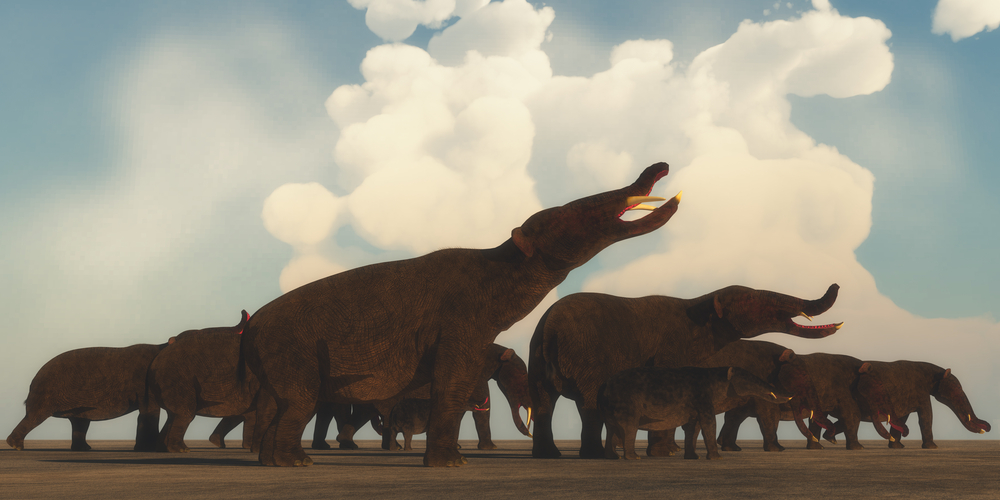 Climate Change Likely Caused Megafauna Extinctions
