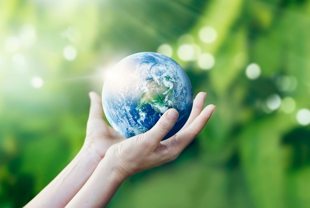 Four Eco-Friendly Things You Can Do on Earth Day and Every Day