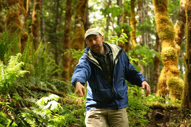 Researcher Pointing to Something while Walking through a Forest