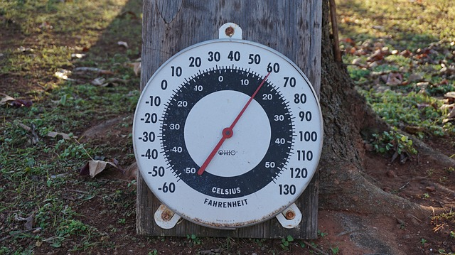 Air Temperature gauge at the foot of a tree
