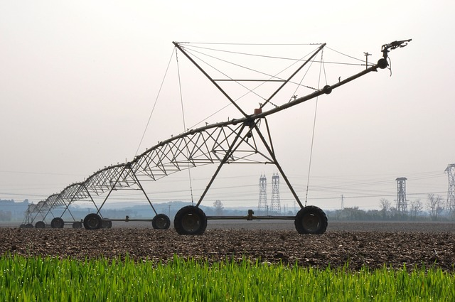 Nocco was concerned that they would prejudice their data due to the donut effect of center pivot irrigation.