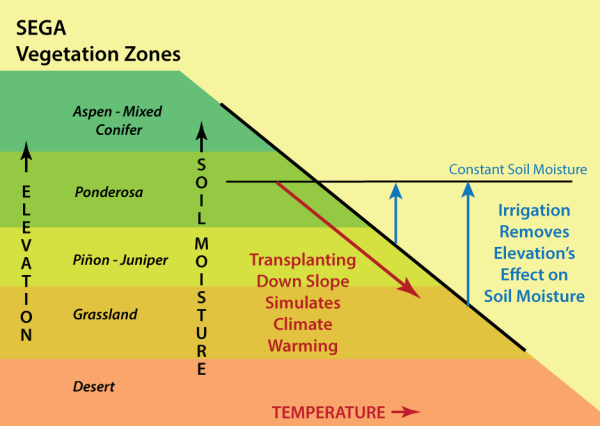 Using elevation change as a surrogate for climate change.