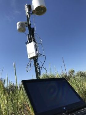 METER weather station, ZL6 data logger, and soil moisture sensors