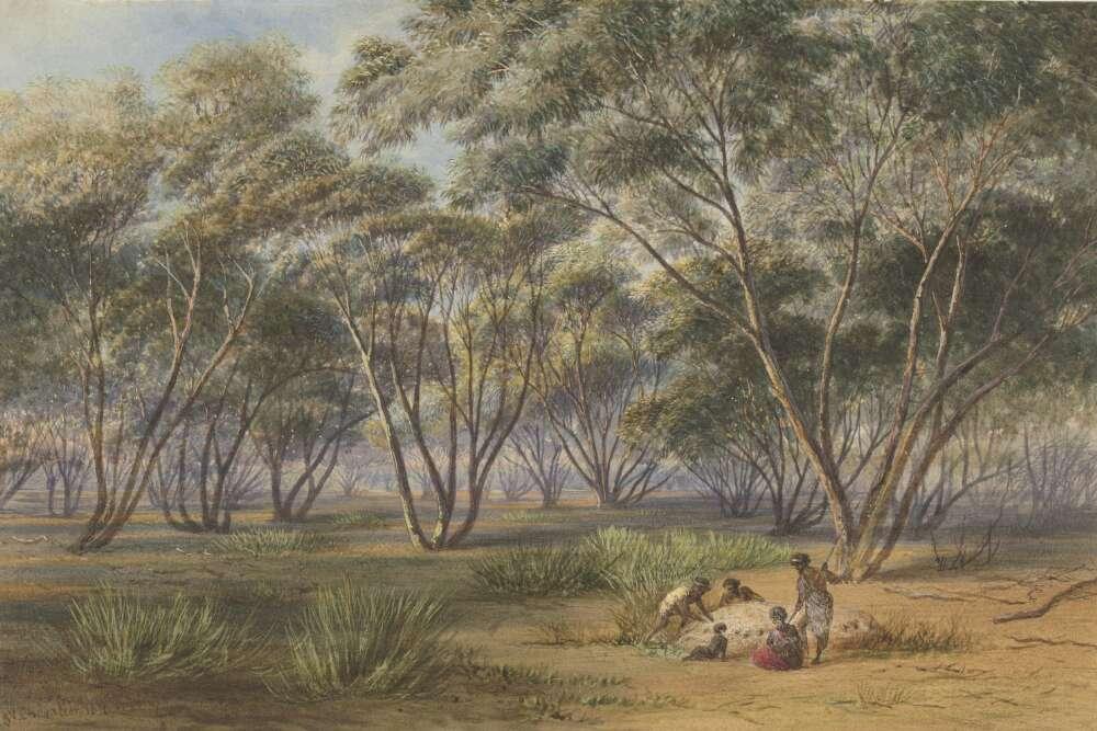 Australian Historical Studies free online 'Classics' issue: Rural History & Environmental History