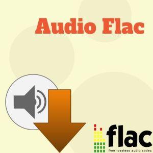 Icona Audio Flac
