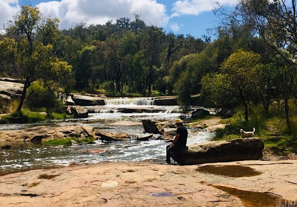 Sitting next to the river at Noble Falls, near Gidgegannup,