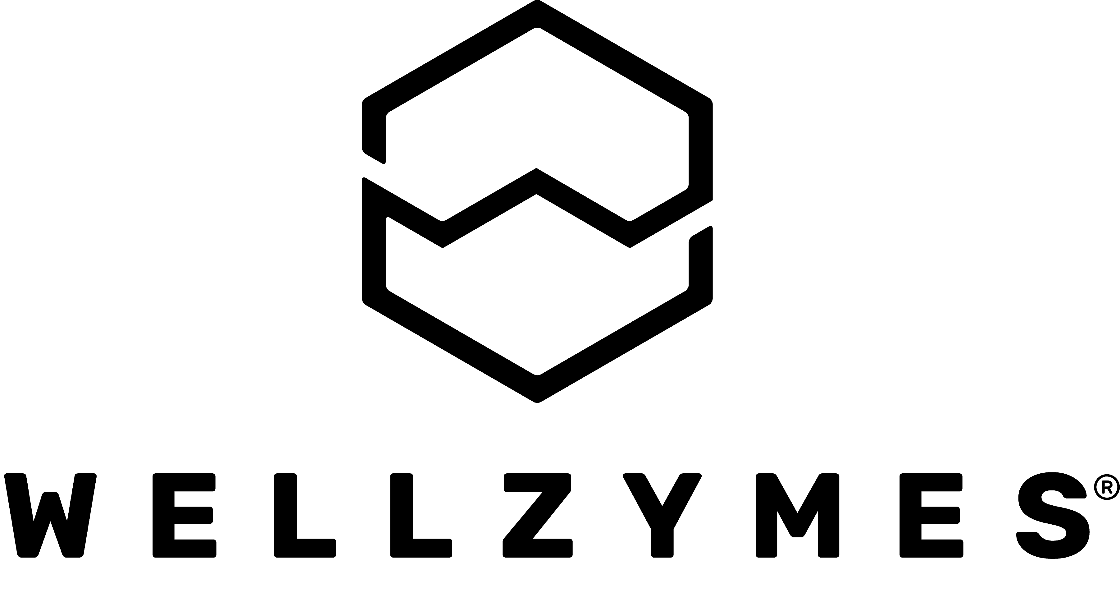 wellzymes logo