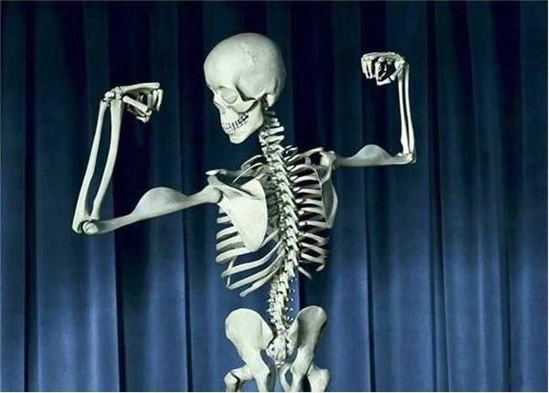St3 Orthopaedic Anatomy Course East Of England Trauma And Orthopaedics