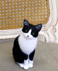 Image result for hachiware cat