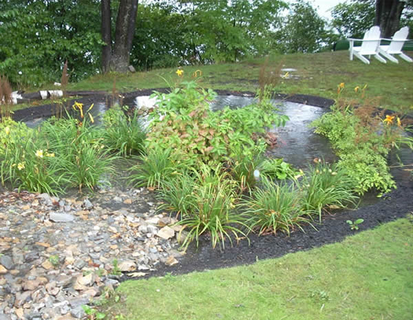 rain garden at work in leominster ma photo credit ma watershed coalition