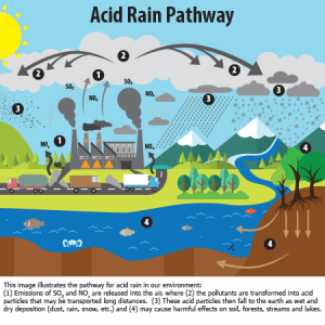 What is Acid Rain? | Acid Rain | US EPA