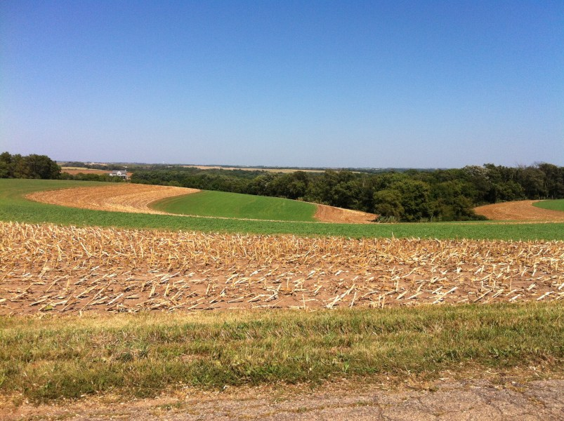 Nonpoint Source  Agriculture   Polluted Runoff  Nonpoint Source  NPS     Strip till cropping in Wisconsin 319