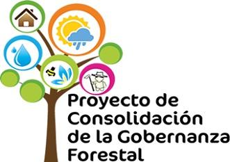 Proyecto Consolidación de la Gobernanza Forestal Colombia