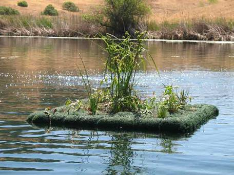 Floating-Wetland-at-Jordan-