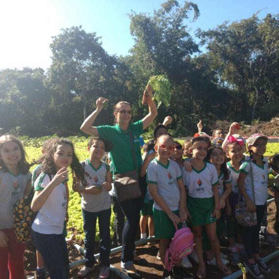 Protegido: Projeto Temperos Naturais 2 ano