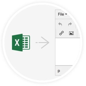 TinyMCE PowerPaste MS Excel snippet