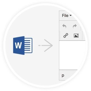 TinyMCE PowerPaste MS Word snippet