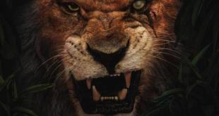 Disney Lion King 2019 Movie - European Premiere - Hot Celebrity News