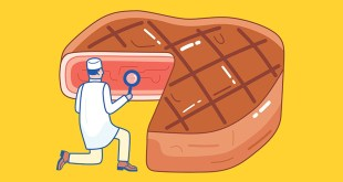 The race to make a lab-grown steak