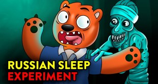 Russian Sleep Experiment! | Animated Cartoons Characters | Animated Short Films