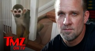 Jesse James' Pet Monkey Breaks into Neighbor's House, Gets Aroused | TMZ