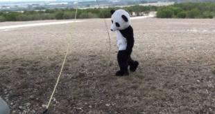 Dude Perfect Panda | Episode 3