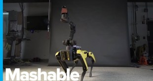 This Robot Dog Has Better Dance Moves Than You