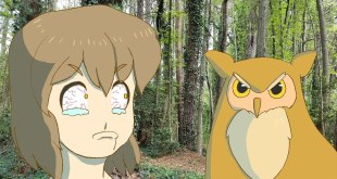 [ OWL STARING CONTEST ] Animated Movie Short Anime Girl Manga Kawaii Cute Animals