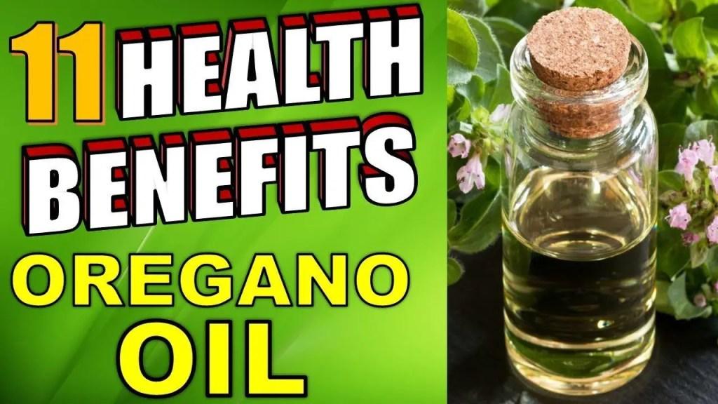 11 health benefits or oregano oil