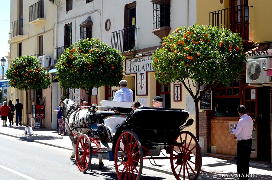 Andalusia-10